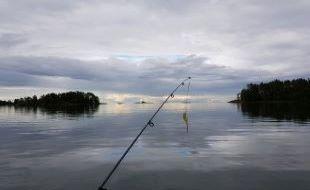 fiske liten3